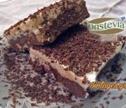 """Σοκολατένιο μπισκοτογλυκό διαίτης με γλυκαντικό """"onstevia"""""""