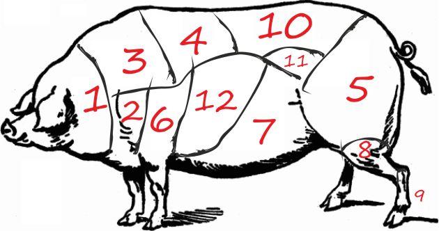 Ανατομία Χοιρινού (pork anatomy)