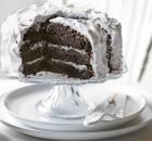 Σοκολατένιο χιονισμένο κέικ