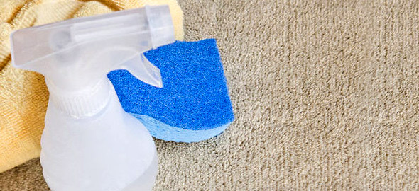 carpet-clean590_2015_4_28_11_34_30_b