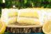 Το τέλειο παγωμένο λεμονογλυκό (Video)